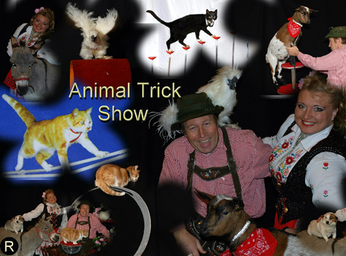 Animal Trick Show!  Dieren Act