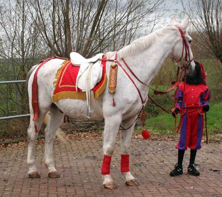 Het paard van Sinterklaas.