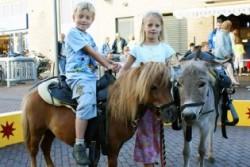 Pony rijden circus winkelcentrum