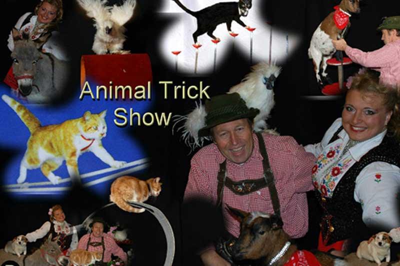 Animal Trcik show